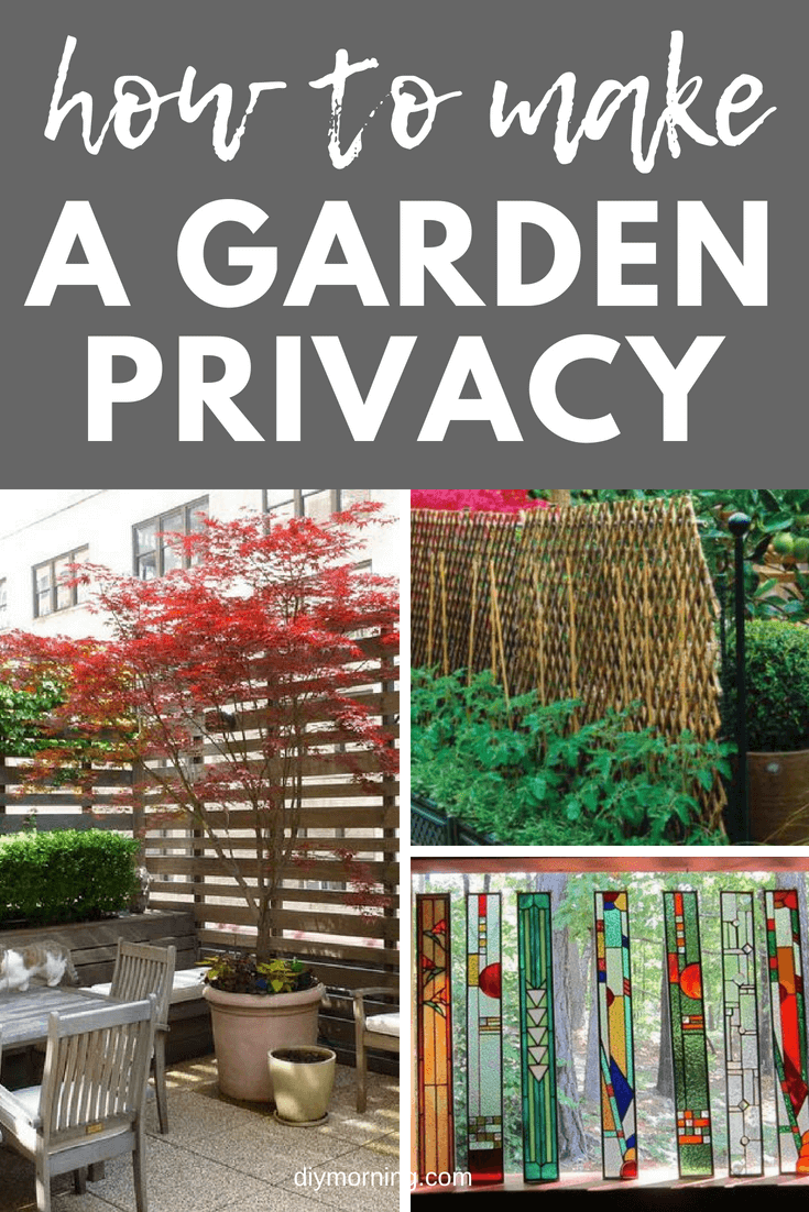How to create a outdoor privacy screen for your garden #outdoor #diy #gardenideas #diymorning