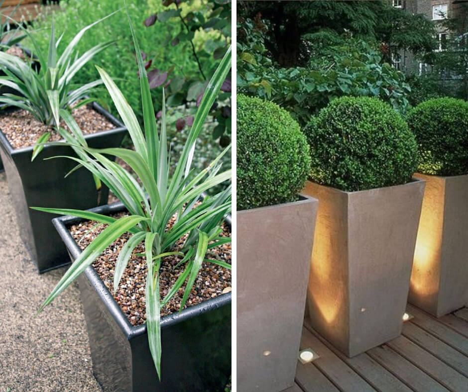 How to Make Leading Lines In Your Garden