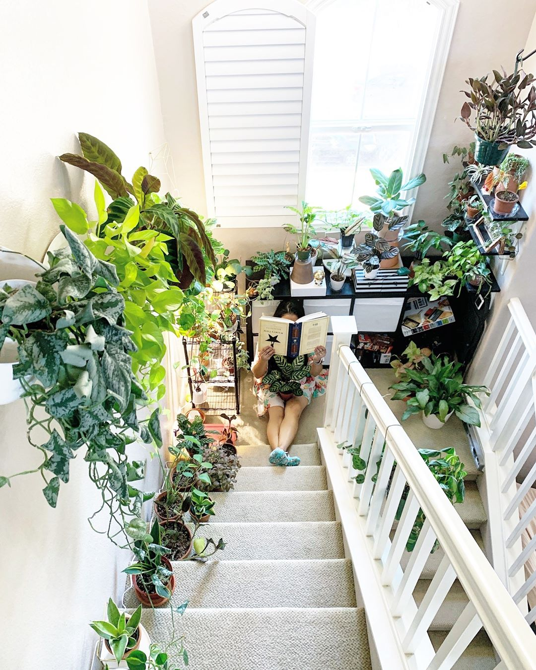Girl sitting reading a book at the end of the stairs. Plants that surround the steps