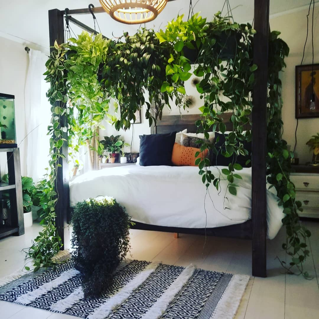 Bed decorated with a canopy made of green plants that hang around the entire bed
