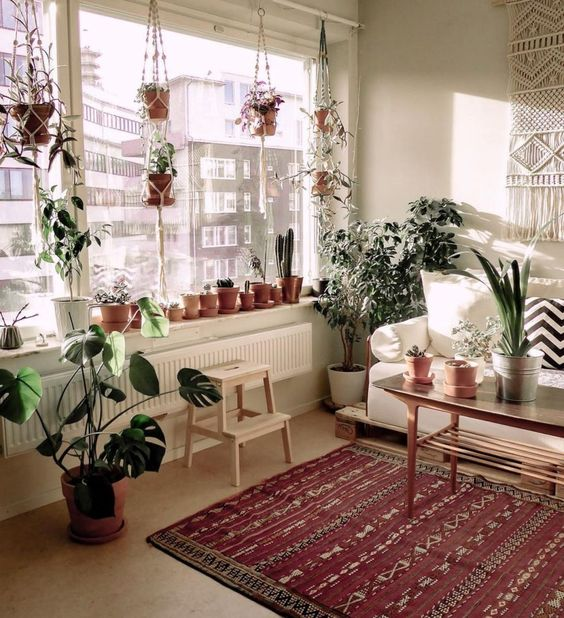 Living room with large window decorated with plants of different types, coffee table, red carpet with golden touches and white armchair