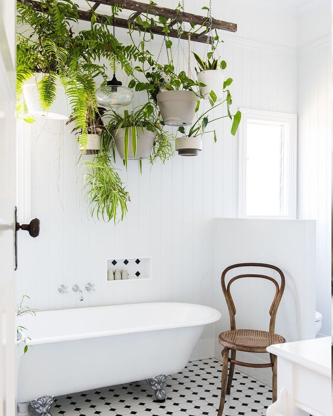 Bathroom with a white tub and a brown chair that adorn the floor while plants of different types hang on the tub