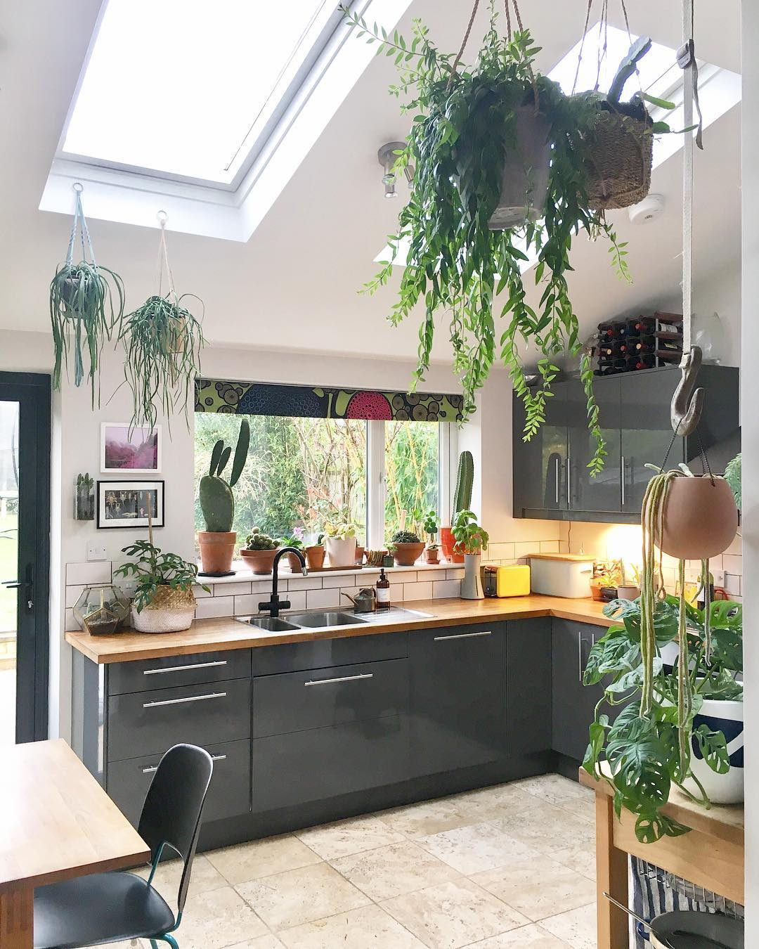 Kitchen of a house with cabinets of gray color and decorated with plants of different types that hang in the ceiling and are placed in the large window
