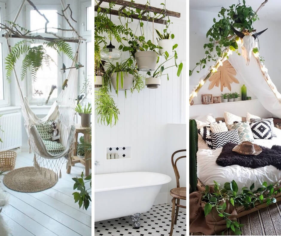 15 Decoration ideas with plants to make every corner of your home an Eden