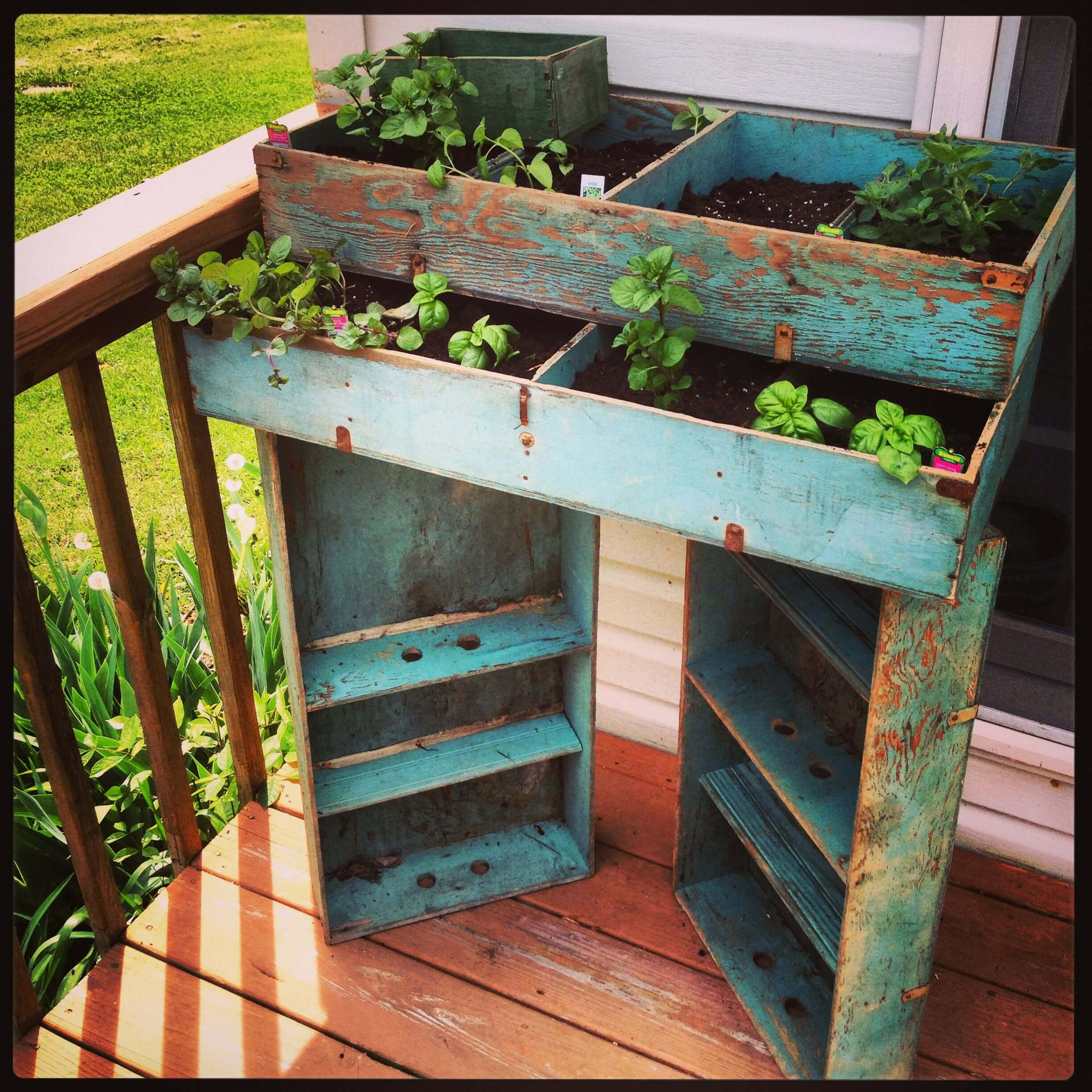 Growing Herbs In Small Spaces: 31+ Creative Herb Container