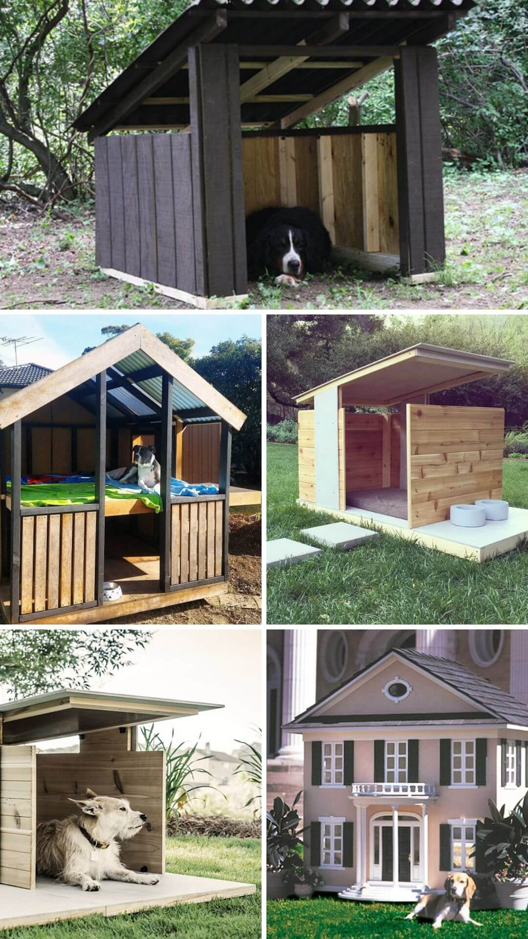 15 Backyard Landscaping Ideas That Will Give Your Dogs ...