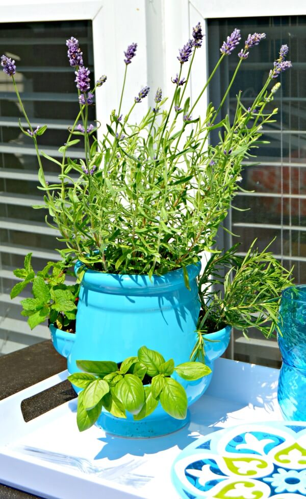 Growing Herbs in Small Spaces: 31+ Creative Herb Container ...