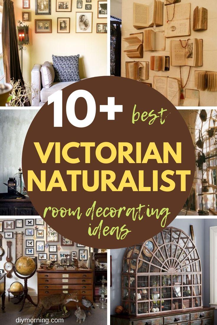 10 Victorian Naturalist Room Decorating Ideas Steampunk Home Decor
