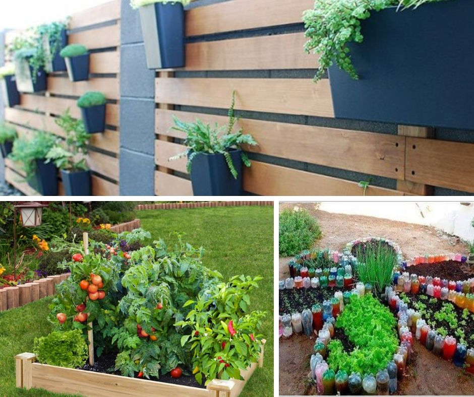 Cheap Gardening Ideas: 17+ Clever & Cheap DIY Garden Ideas: Easy And Out Of The Box