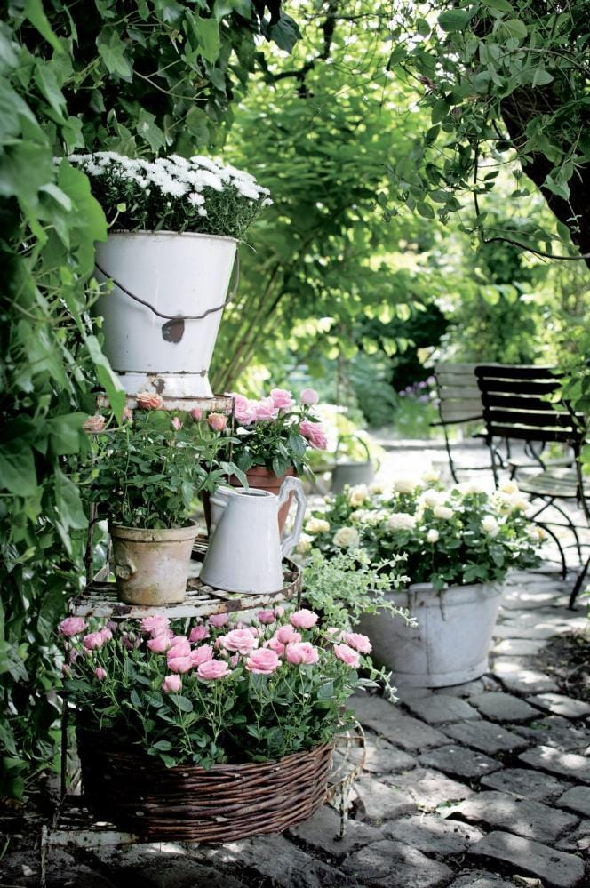 Best cottage style garden ideas for landscaping #13