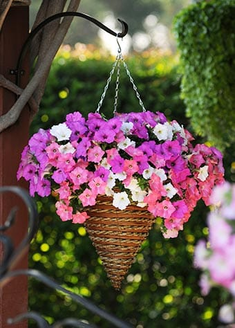 Best DIY outdoor hanging planter ideas and designs #21