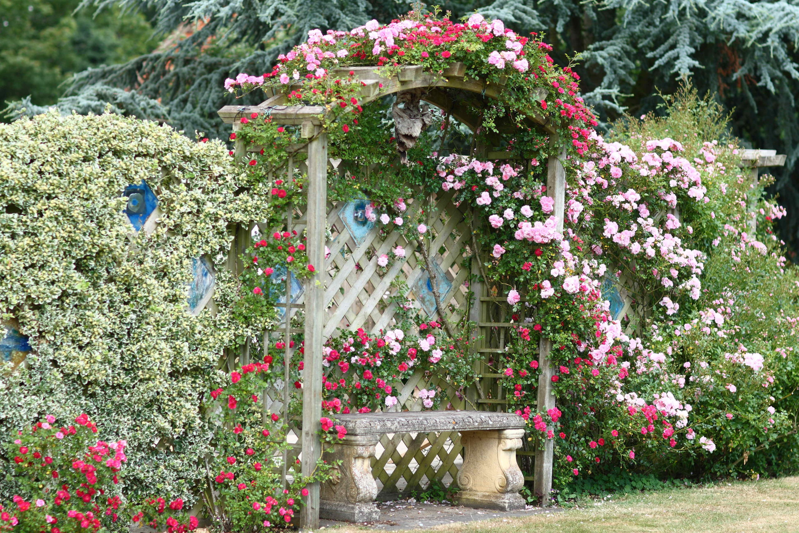 Best cottage style garden ideas for landscaping #26