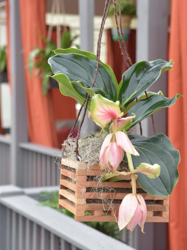 Best DIY outdoor hanging planter ideas and designs #29