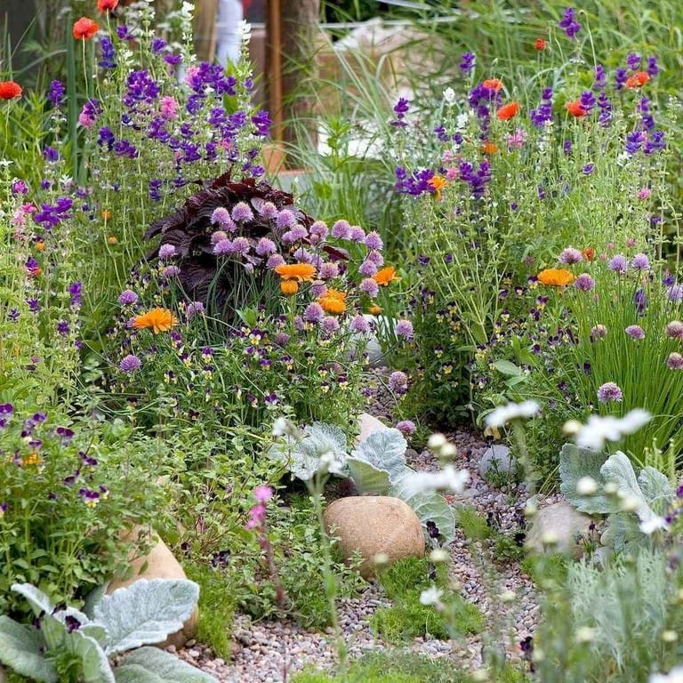 Best cottage style garden ideas for landscaping #31