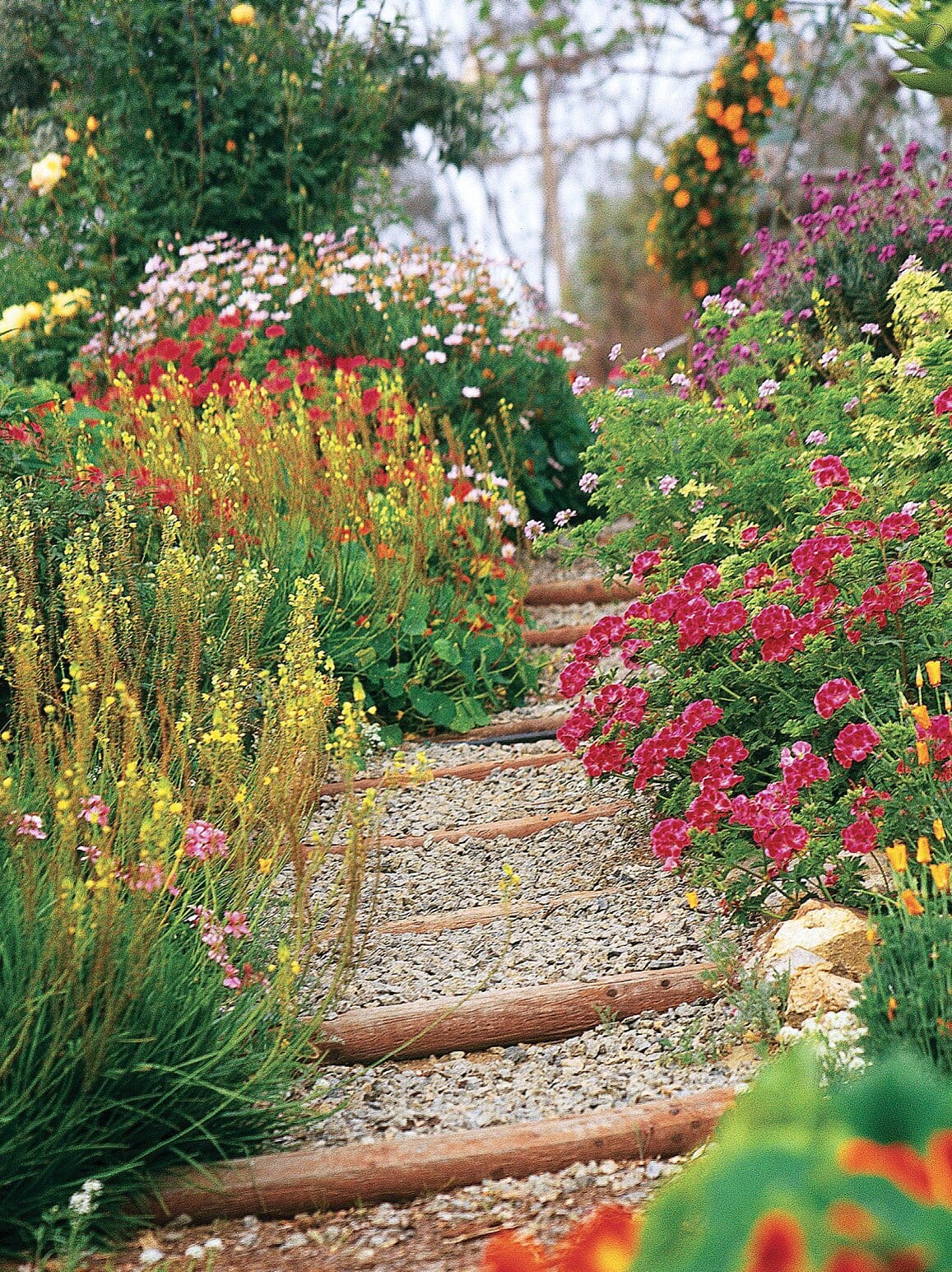 Best cottage style garden ideas for landscaping #6