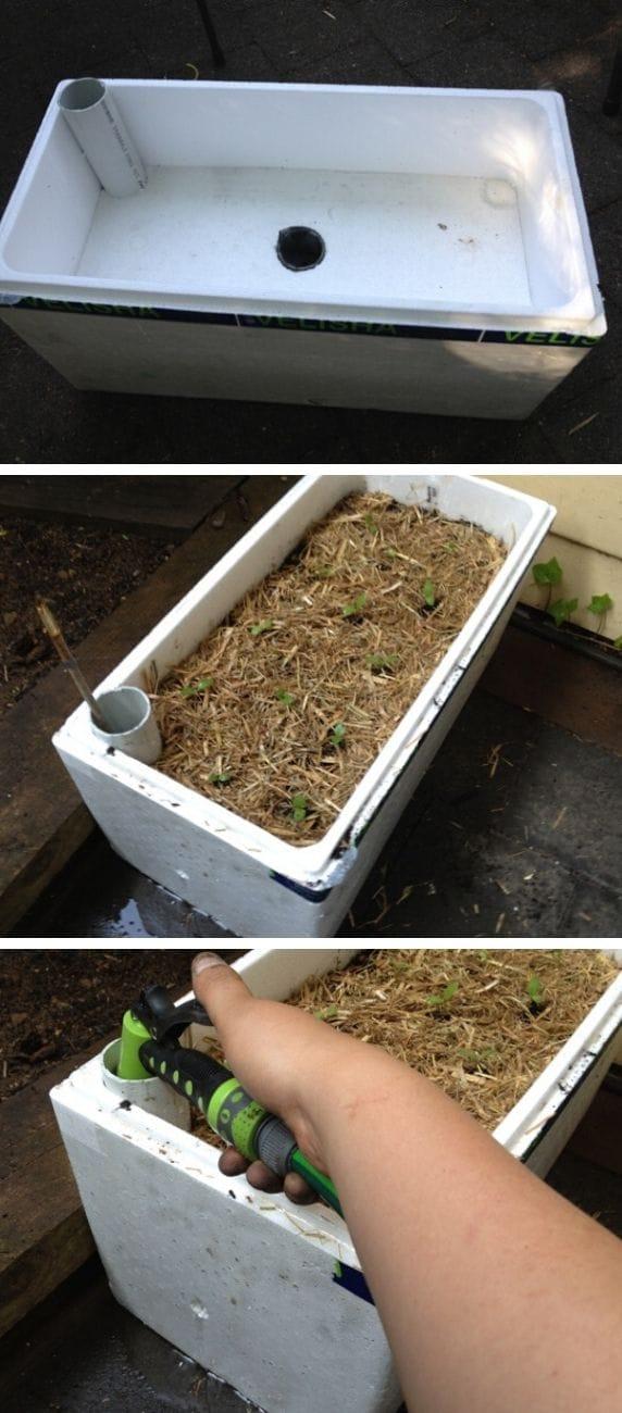 Self watering planter box