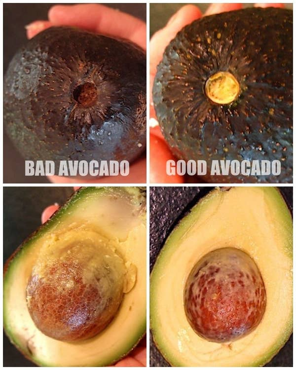 Learn the difference between good avocado and bad avocado