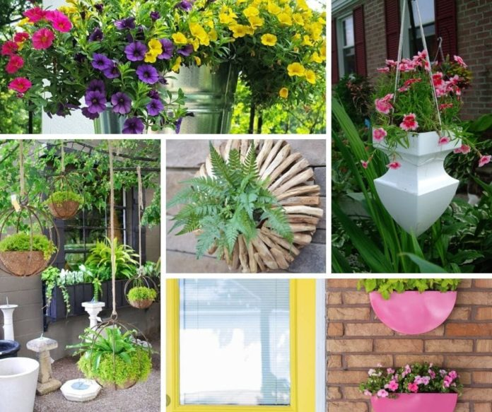 Best outdoor hanging planter ideas