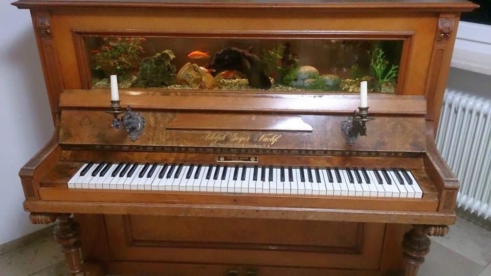 Repurposed Old Piano into an aquarium